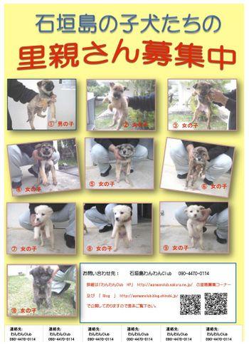 20110204_hokenjyo11_2