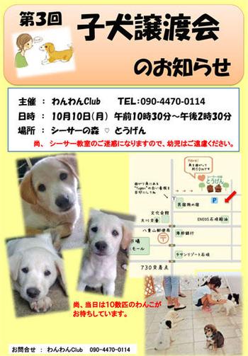 131796546779913113018_jyoutokaipop3