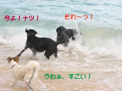 Photo_136